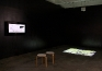 Installation view: Masturpiece (left) and What Has Befallen Us, Barbad? (right).