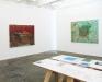 Installation view: Bahar Behbahani, Garden Coup