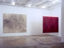 Brain Stain - installation view, east and south wall.