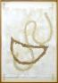 Nolan Simon, Organ, 2010. Mastic, caulk and oil on paper in artist\'s frame, 35 x 24.5 in.