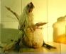 Pia Maria Martin: Marche au Supplice, 2005. Still from 16 mm film, 5.25 min.