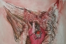 Rokni Haerizadeh Life on DIVV\'s Trunk I, 2008. Oil on canvas, 78.75 x 118 in.