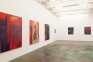 Jackie Gendel, Stained Glass Cliff, north and west walls, installation view.